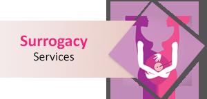 Surrogacy Services